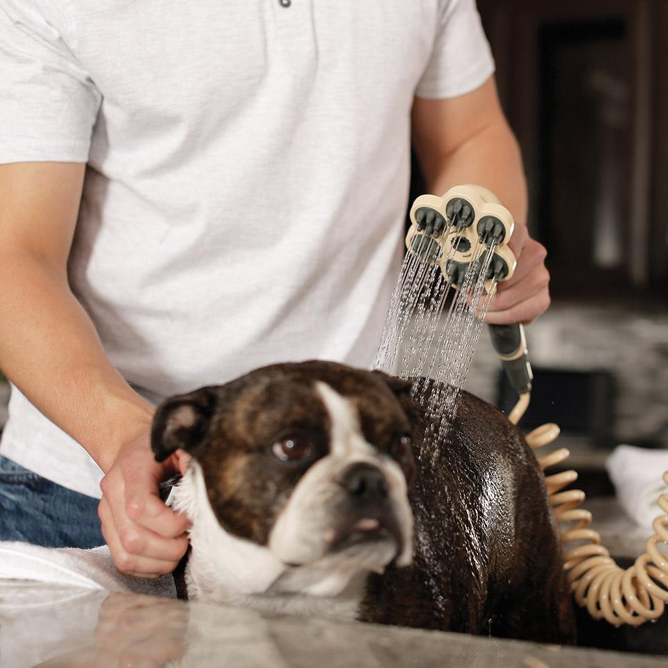 Oxygenics PawSpa PetJet - doccetta per animali -